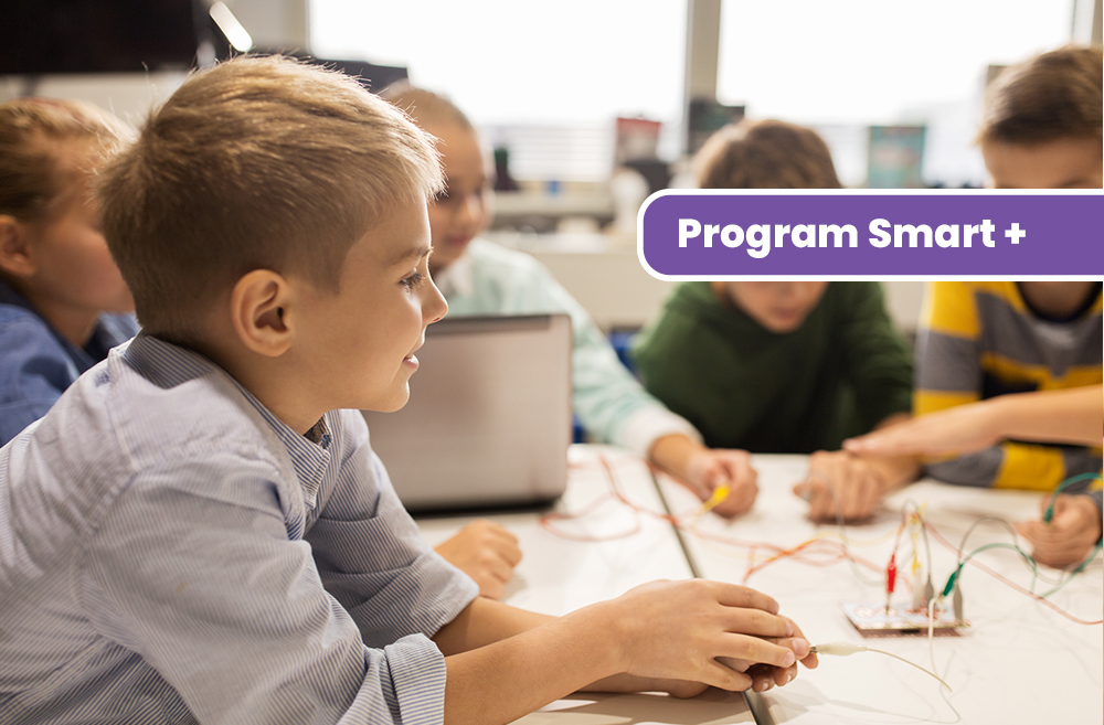program smart plus scoala primara micul lord